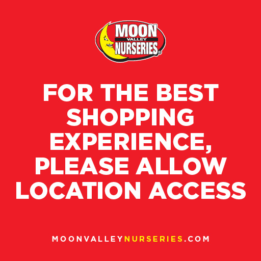 default store placeholder image