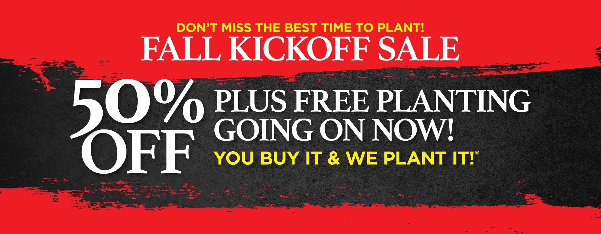 50 percent off plus free planting graphic