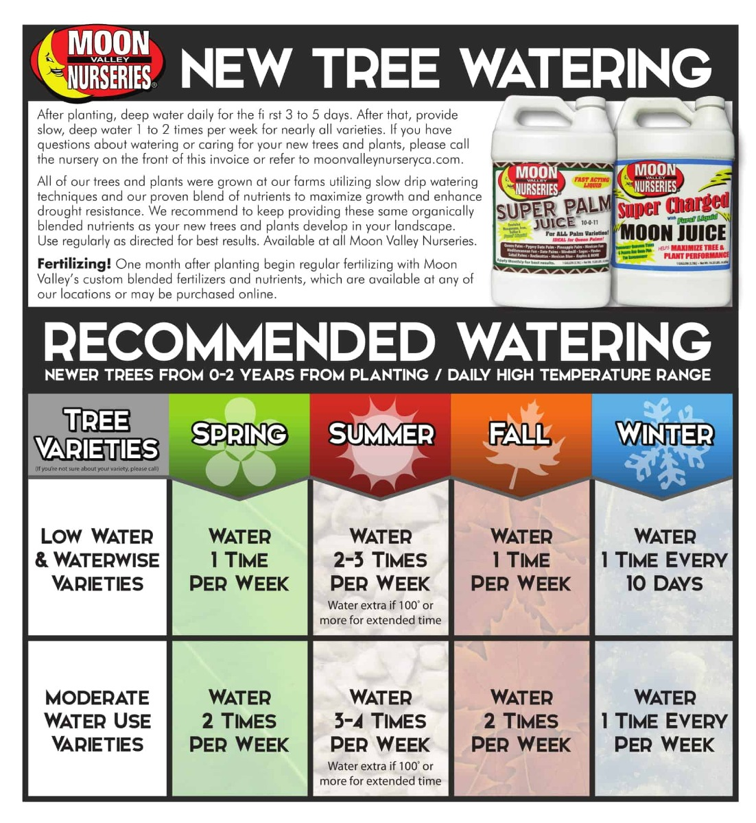 Watering New Trees Schedule